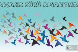 Parçacık Sürü Algorimtası (PSO-Particle Swarm Optimization)